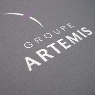 GROUPE ARTEMIS RAPPORT ANNUEL