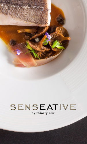 SENSEATIVE by Thierry Alix
